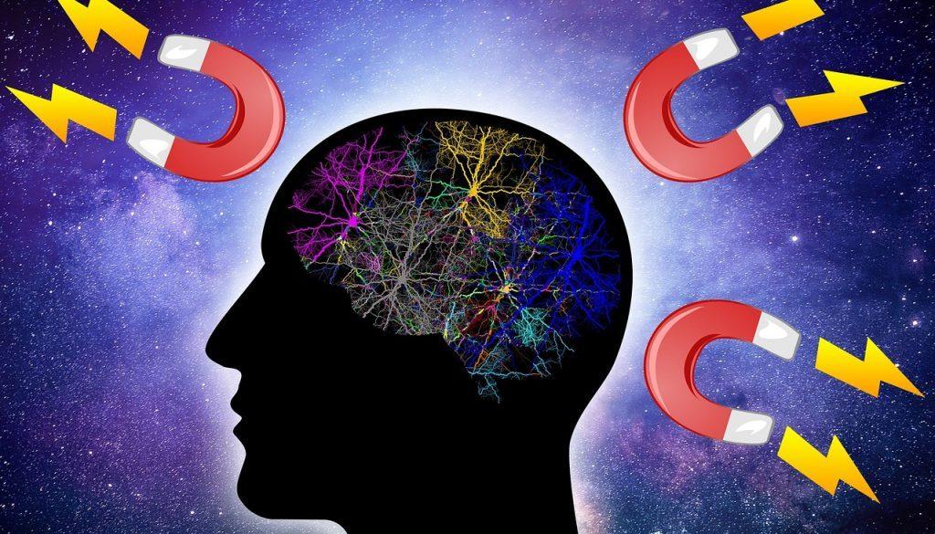 brain 3536477_1280